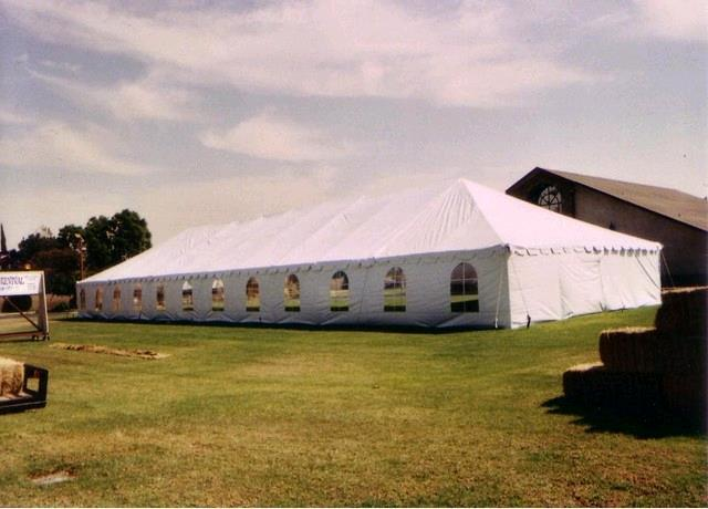 Where to find TENT 40 X 100 WHITE in Tupelo